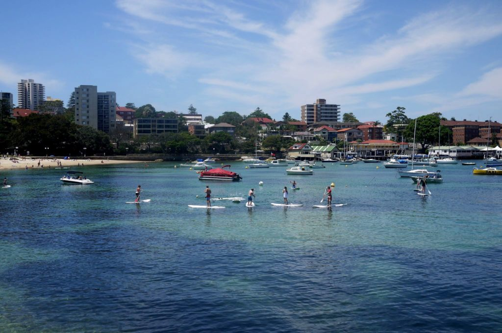 Board paddlers at Manly beach