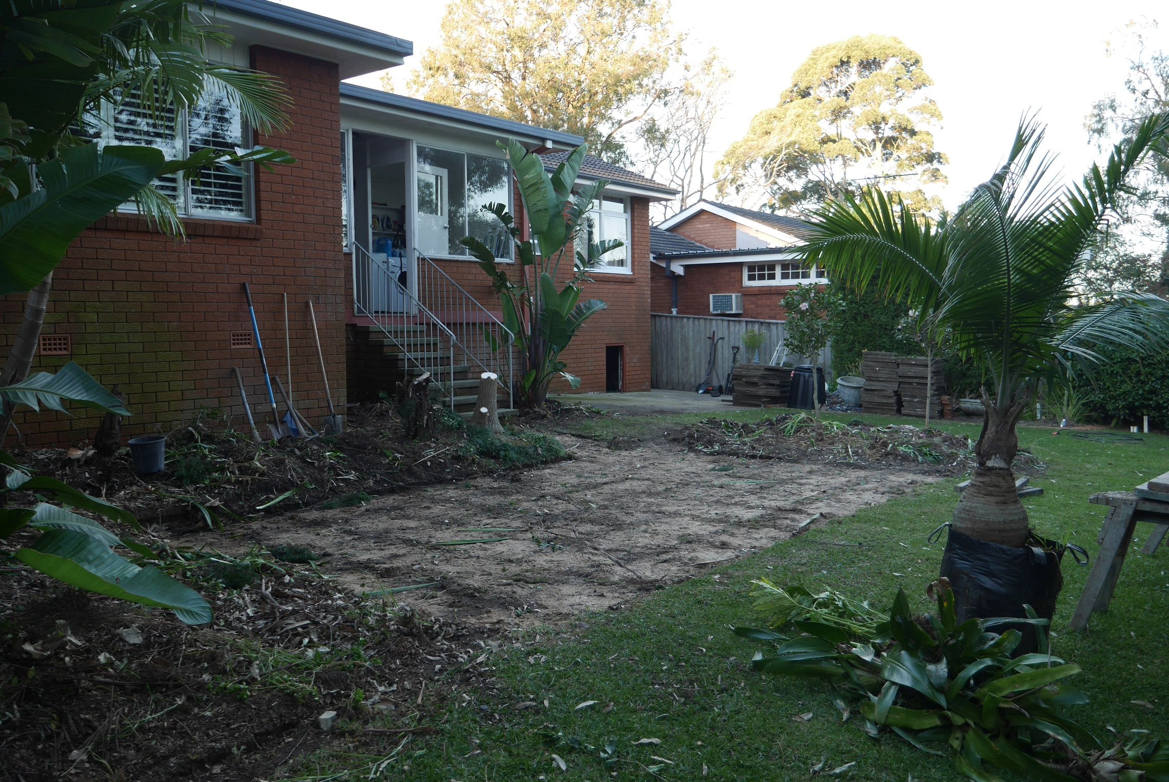 BEFORE Excavation: Plants in garden bed and concrete pavers are removed