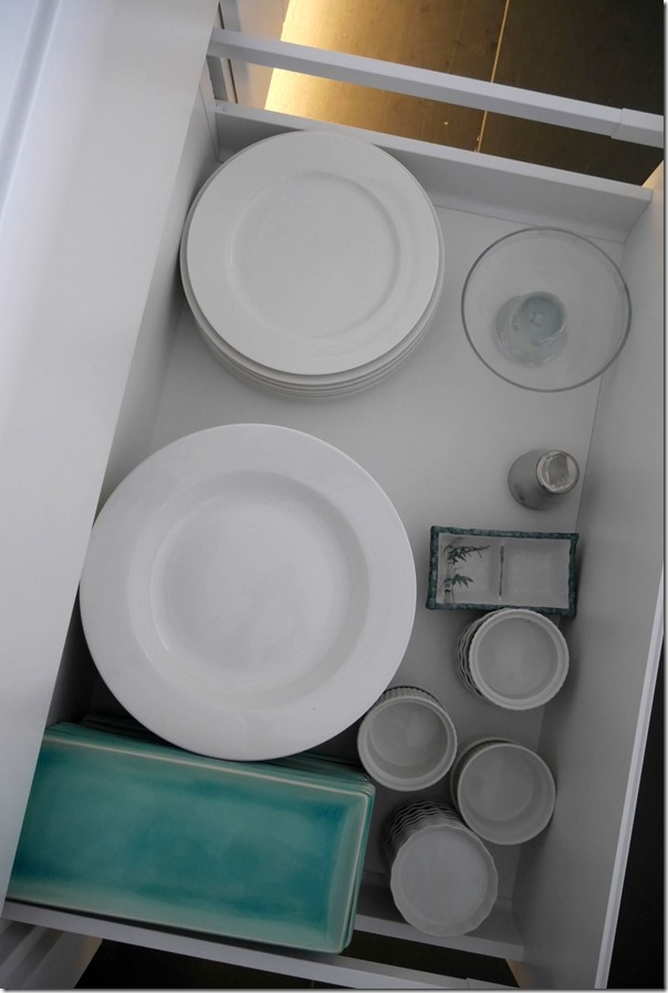 Large dinner plates, platters, sauce plates and ramekins